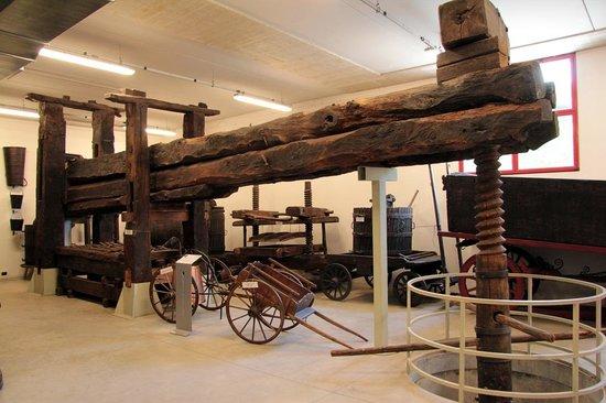 Tino Sana, l'arte del legno ha messo radici al museo