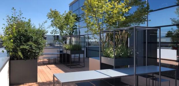 Studio Ellebi, piccoli spazi verdi crescono in casa